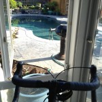 on trainer 11days post knee replacement & 1st day having my pedal stroke back. Thanx - from @charx