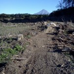 Mangamahoe MTB park Tim's triple track @NewPlymouthNZ ride 2 sort race course 4 weekend - from @Graeme_MTB