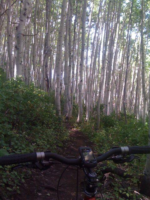 JensonUSA Bar Shot Contest! | The FredCast Cycling Podcast